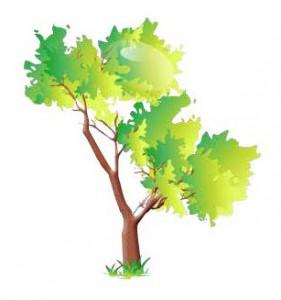 Street Tree Clip Art.