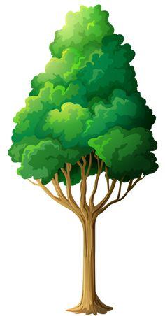 ●••°‿✿⁀ Trees ‿✿⁀°••●.