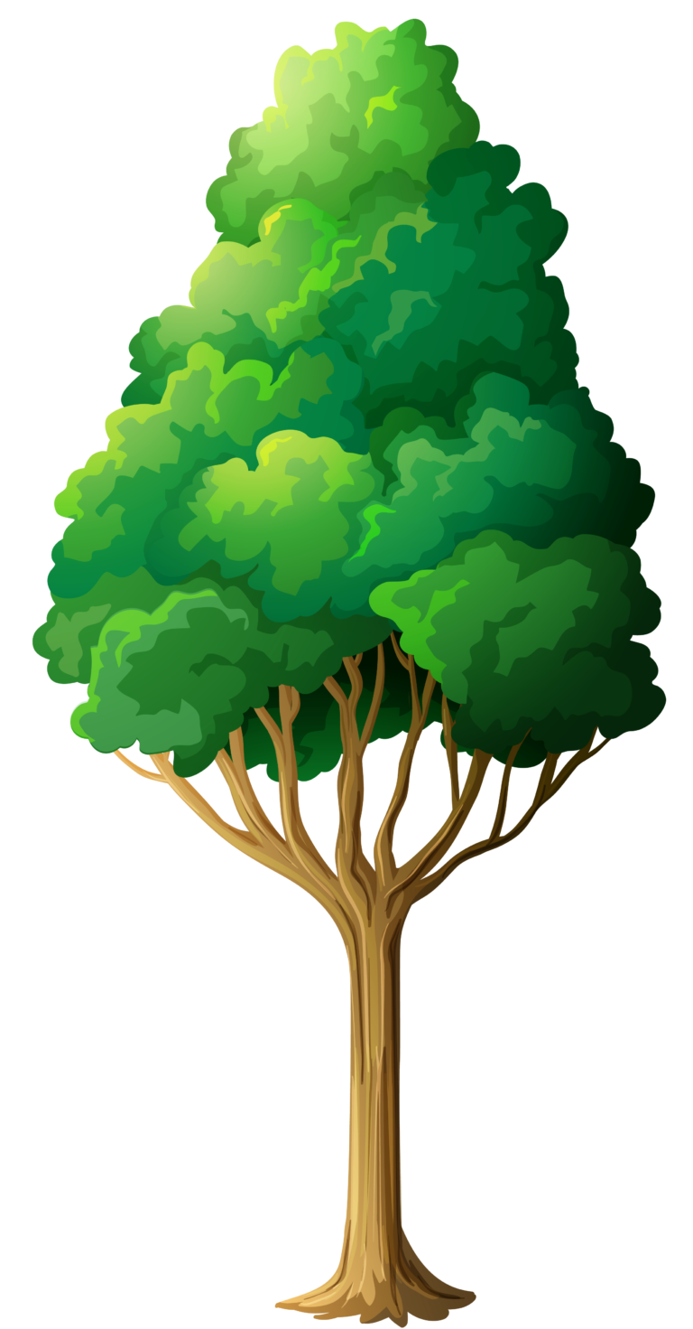 Trees green tree clipart.