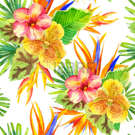 Beautiful Tropical Plants On White Background. Composition With.