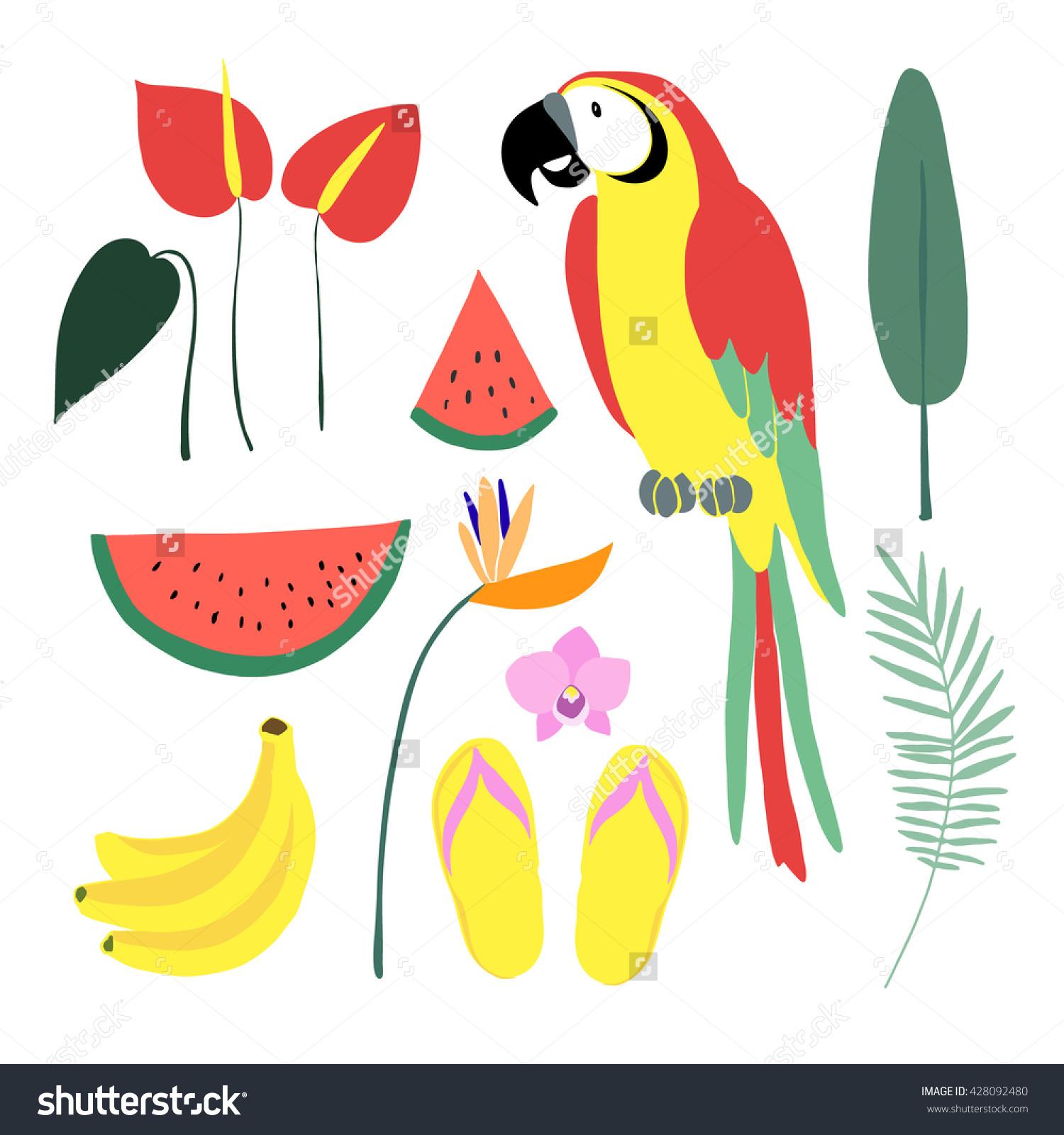 Summer Tropical Graphic Elements Parrot Bird Stock Vector.