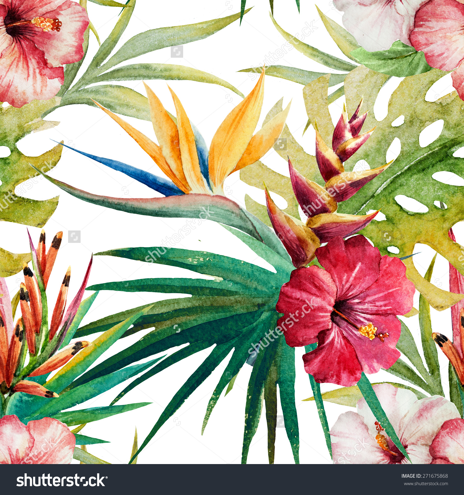 Watercolor Plant Leaves Orchid Flower Strelitzia Stock.