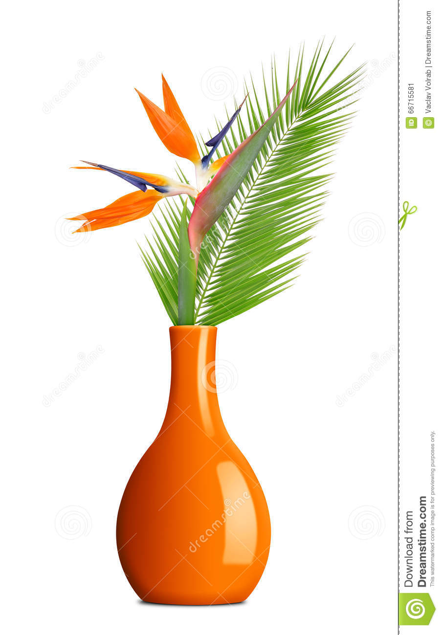 Strelitzia Reginae, Bird Of Paradise Flower With Palm Leaf In Vase.