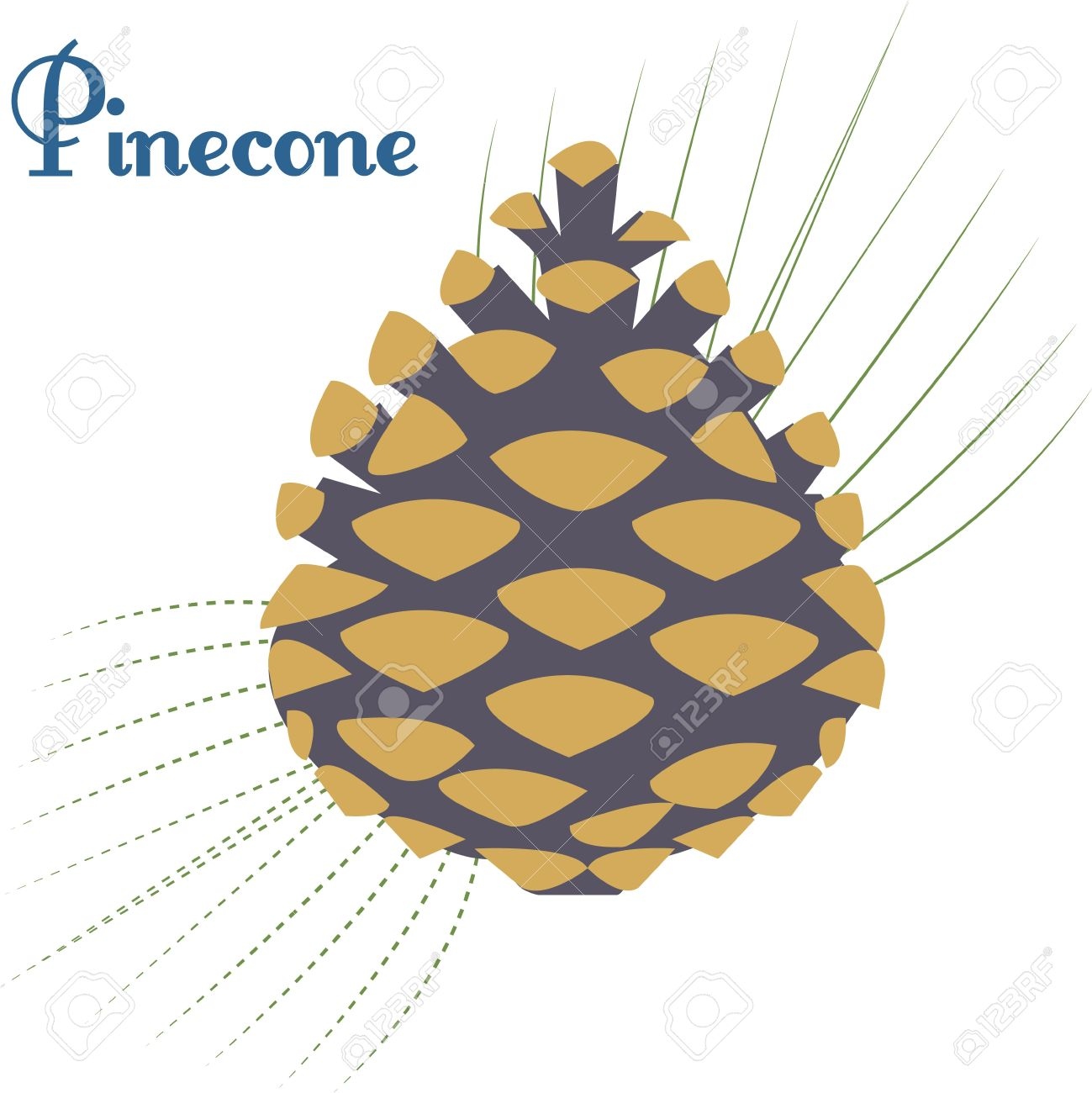 A Pinecone Accented With A Spray Of Pine Needles Makes A Striking.