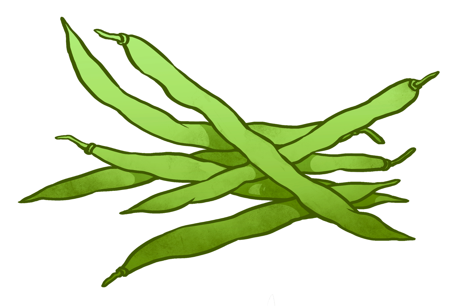 String beans clipart » Clipart Station.