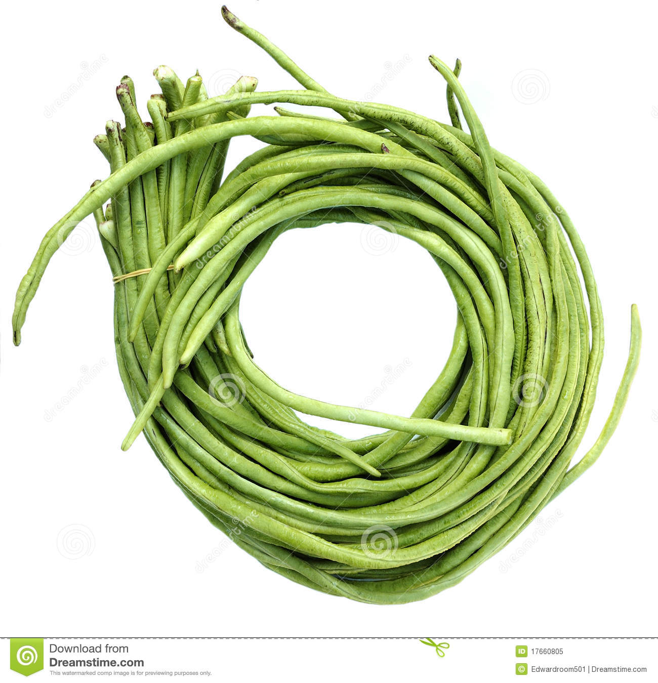 String beans clipart 1 » Clipart Station.