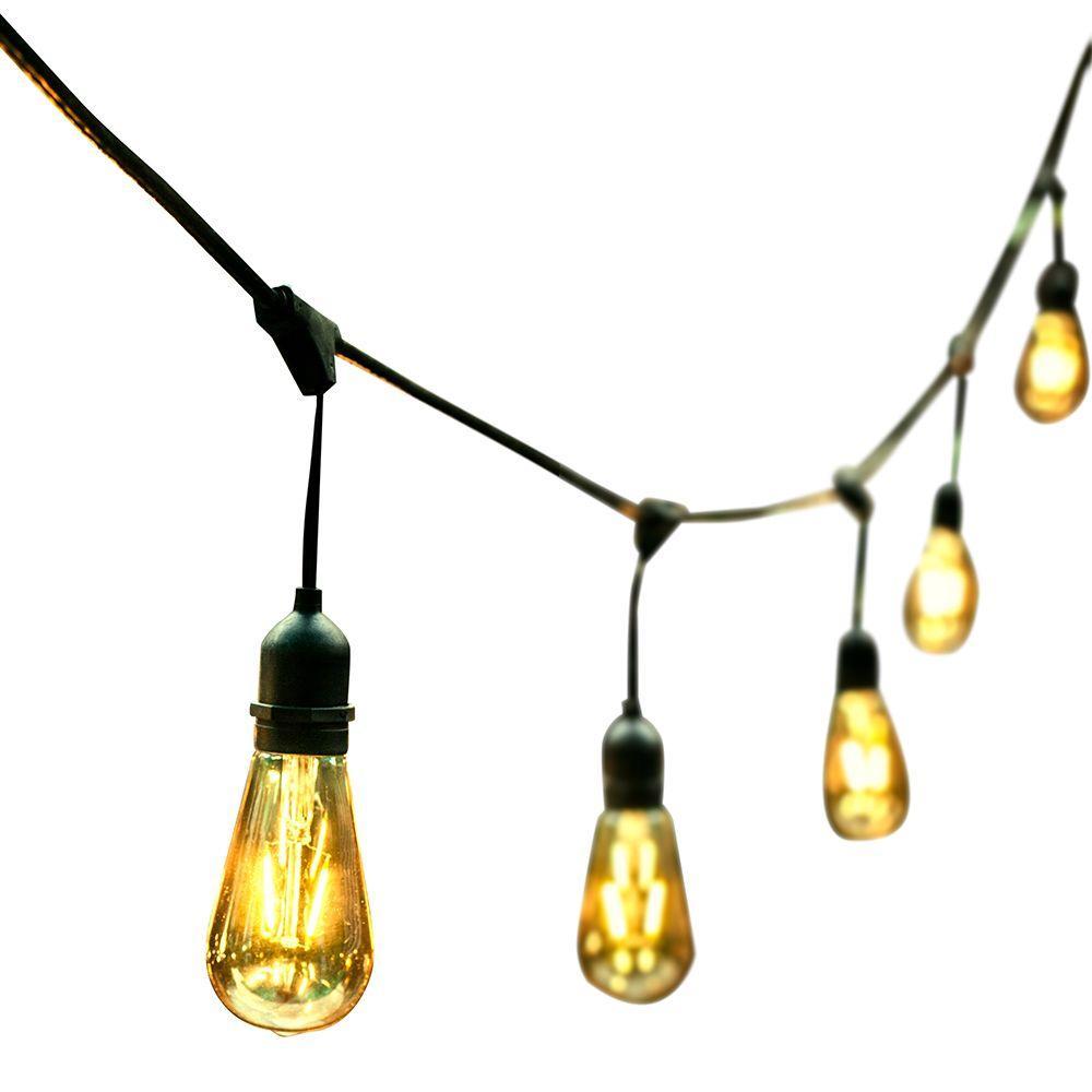 OVE Decors 48 ft. 24 Oversized Edison Light Bulbs Black/Gold All Weather  LED String Light.