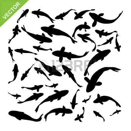 2,366 Striped Fish Stock Vector Illustration And Royalty Free.