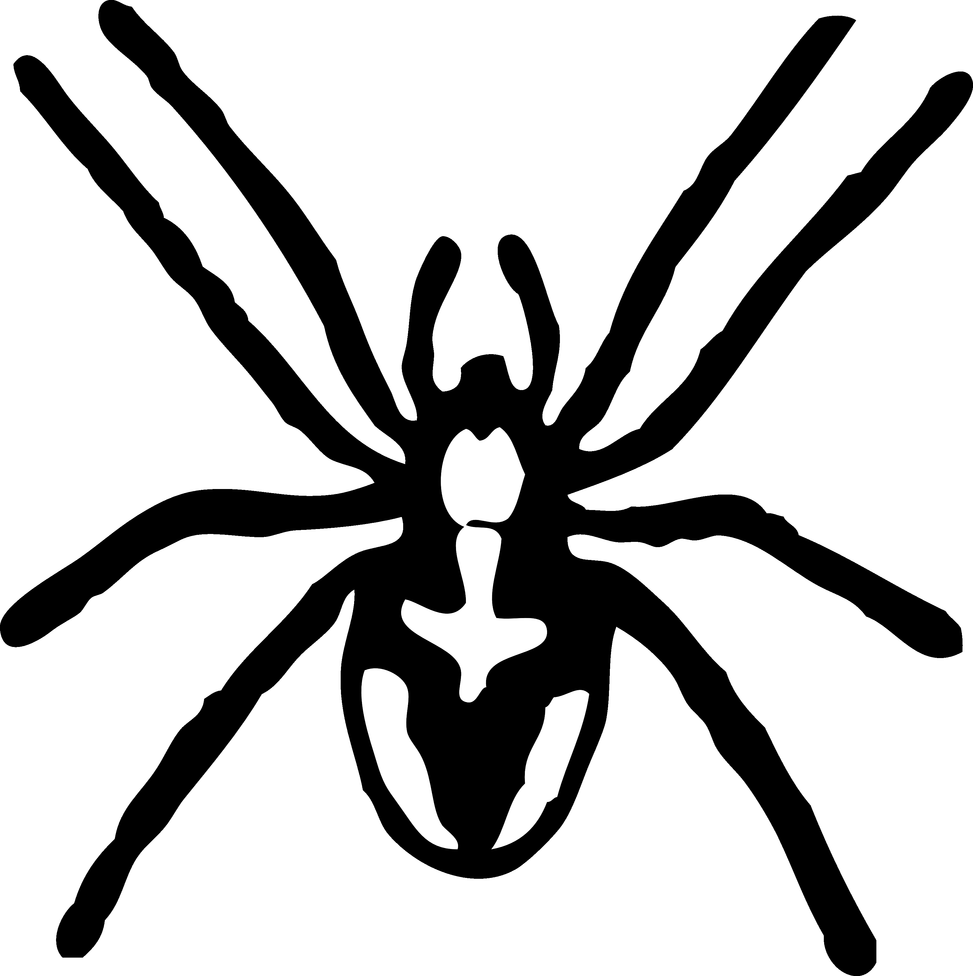 Tag: black and white striped spider with green eyes.