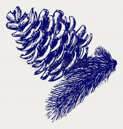 3,489 Pinecone Stock Vector Illustration And Royalty Free Pinecone.