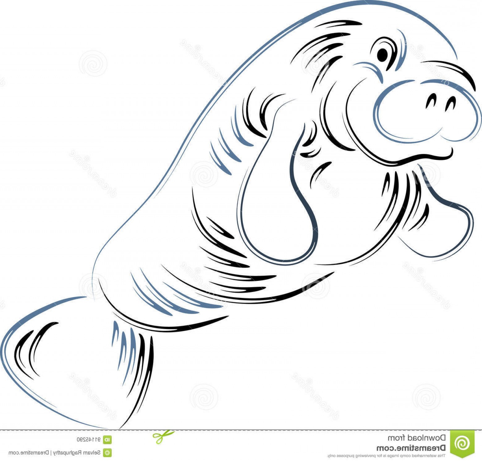 Seal Clip Art Vector.