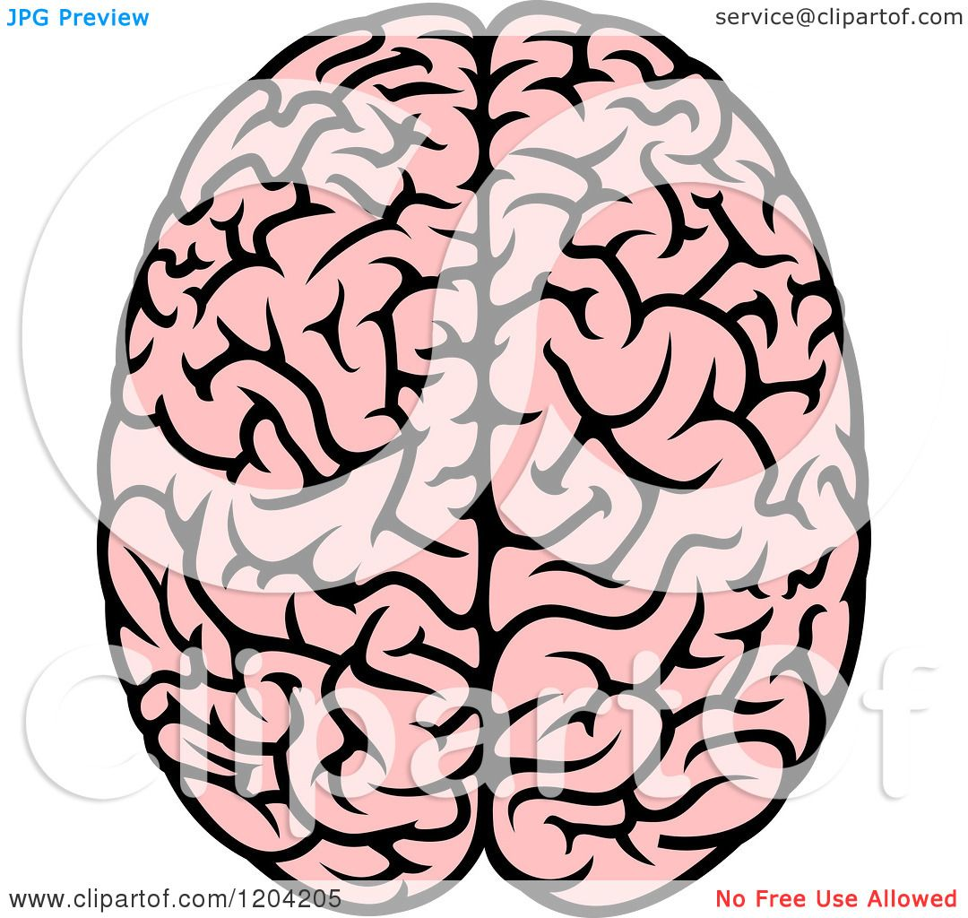 Clipart of a Pink Human Brain 3.