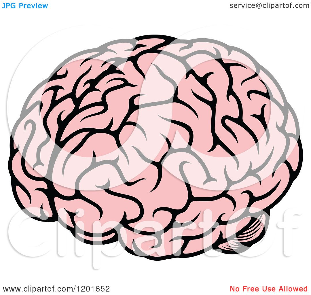 Clipart of a Pink Human Brain.