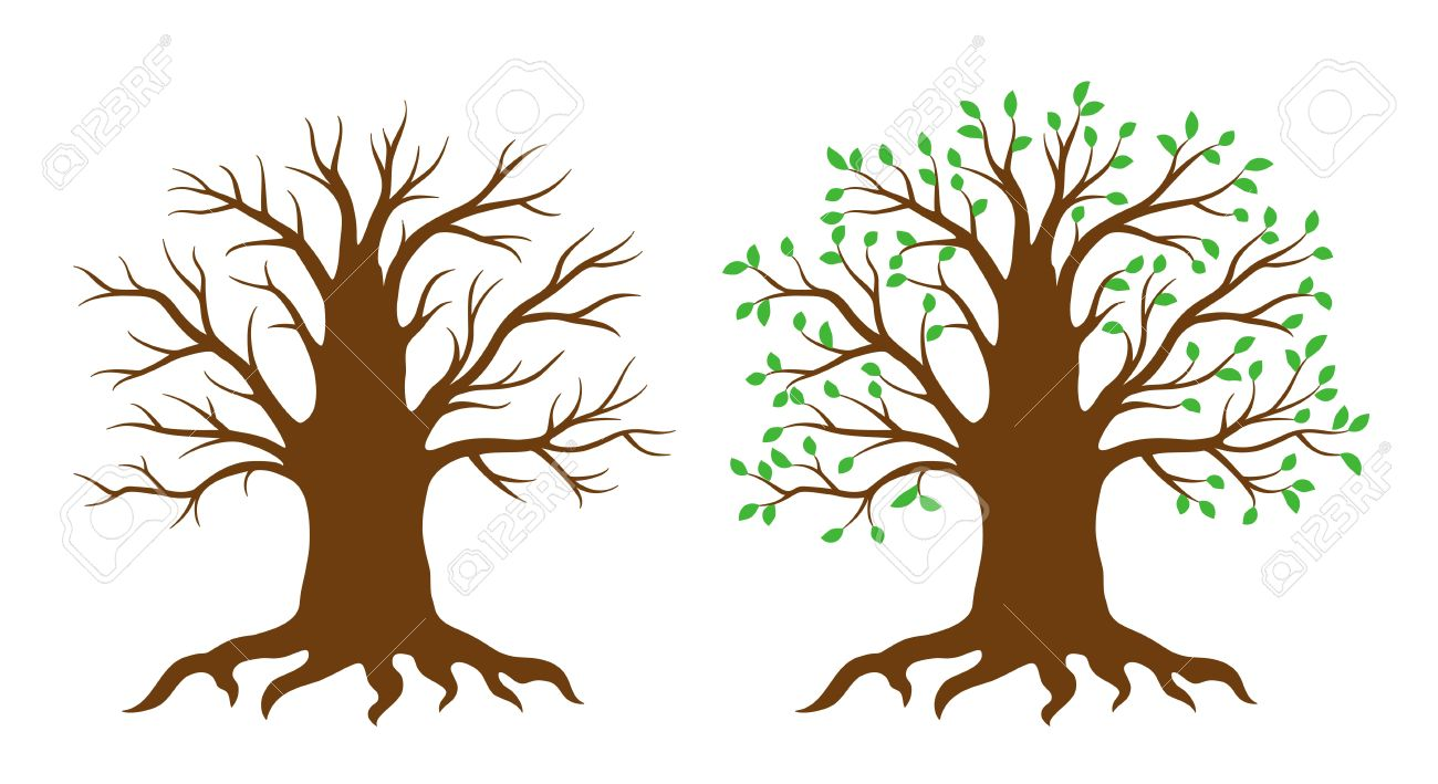 Tree With And Without Leaves Royalty Free Cliparts, Vectors, And.