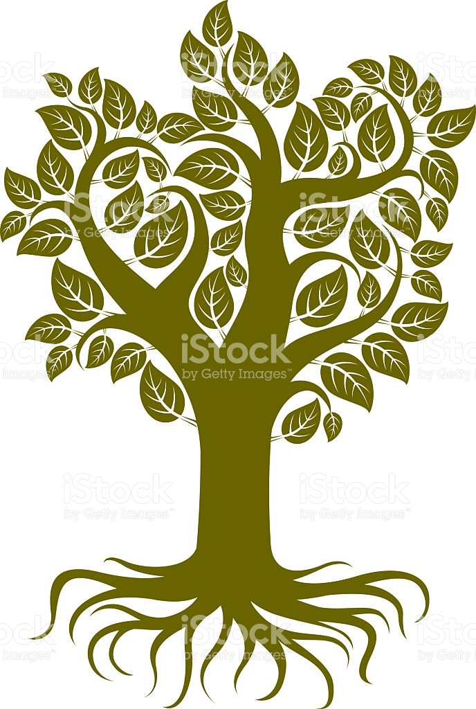 Vector Art Illustration Of Branchy Tree With Strong Roots Tree.