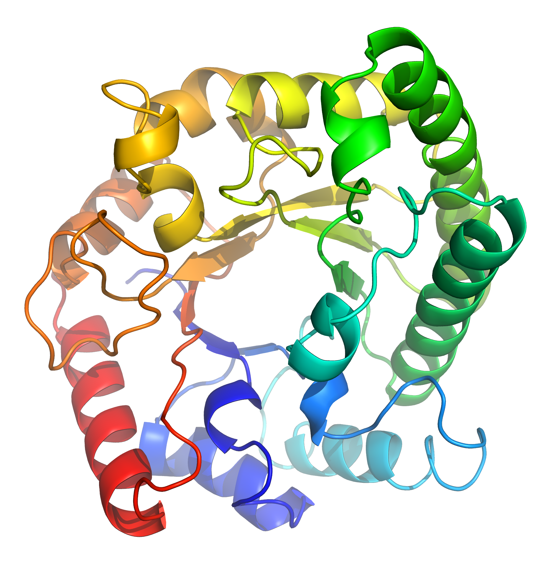 Protein has seven functions that distinguish from other.