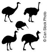 Struthioniformes Vector Clip Art Illustrations. 11.