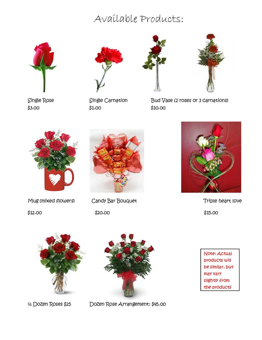 carnation valentines sale 2016 flowers only.jpg.