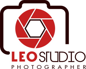 leo studio photographer Logo Vector (.AI) Free Download.