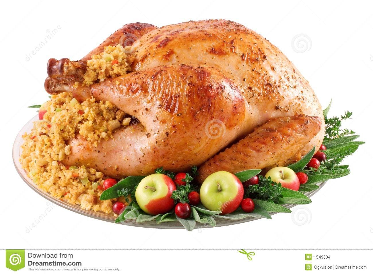 Turkey Stock Image.