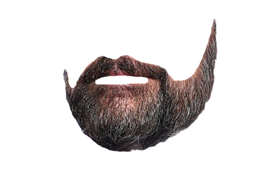 HQ Beard PNG Transparent Beard.PNG Images..