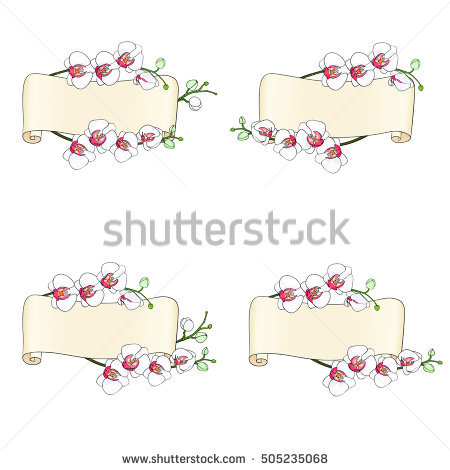 Hand Parchment Drawn Illustration Set Stock Photos, Royalty.