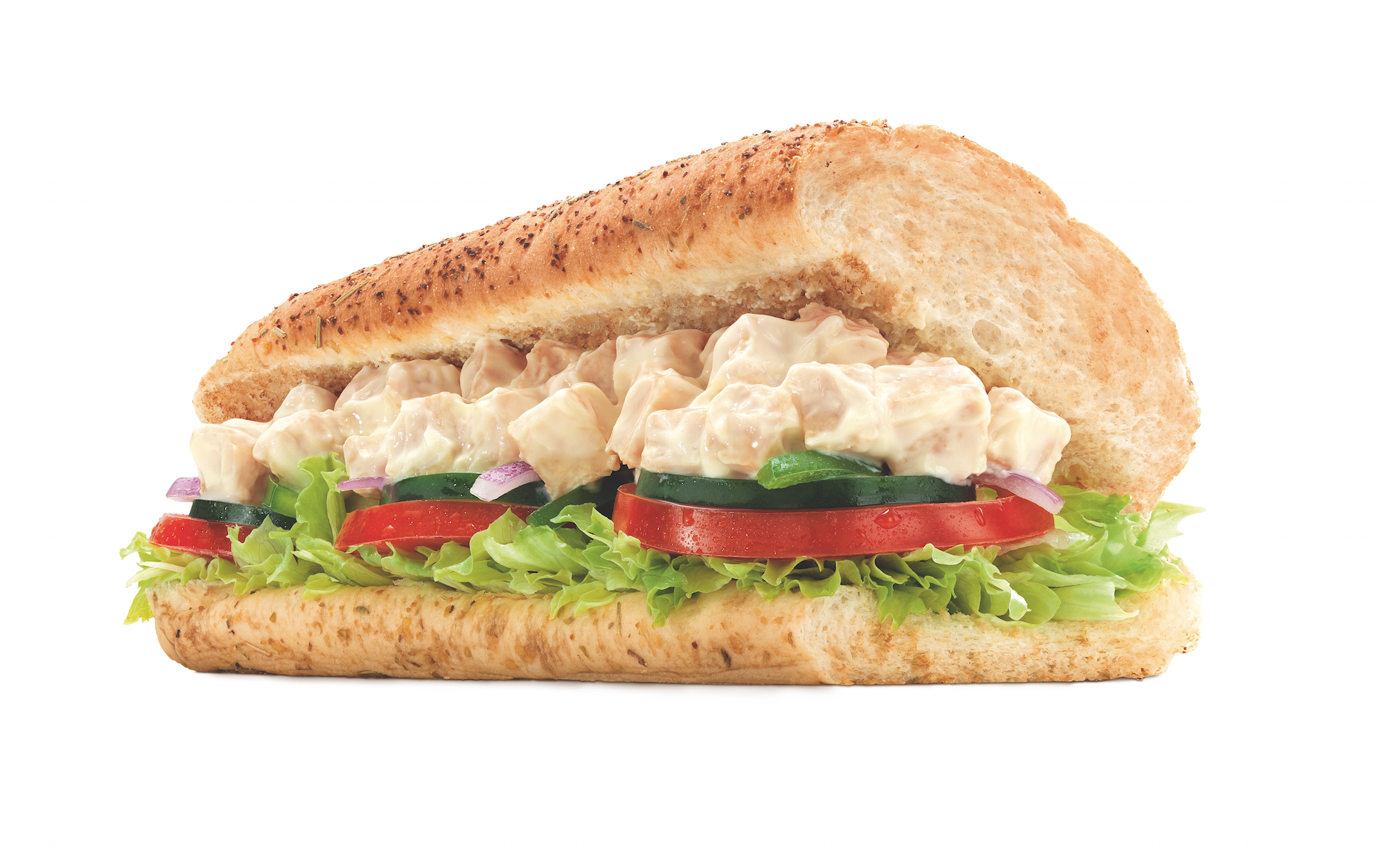 Craziest Subway Sandwiches Around the World.