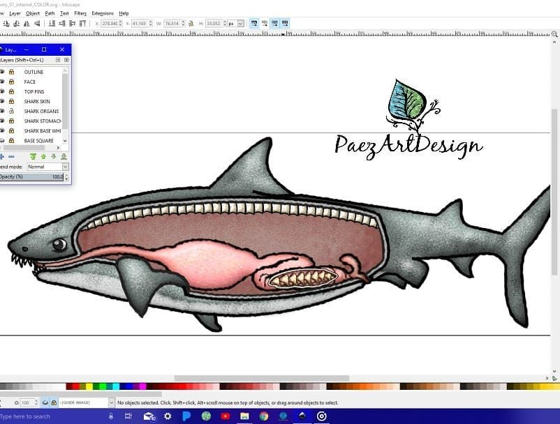 Shark anatomy clip art in the works! Visit & SUBSCRIBE for.