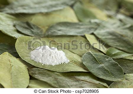 Stock Images of Cocaine powder (substituted by flour) on dried.