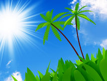 Subtropical Garden Palm Trees Lawn Stock Illustrations.