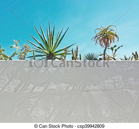 Stock Photography of White roughcast wall with green subtropical.