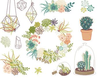 Succulent clip art.