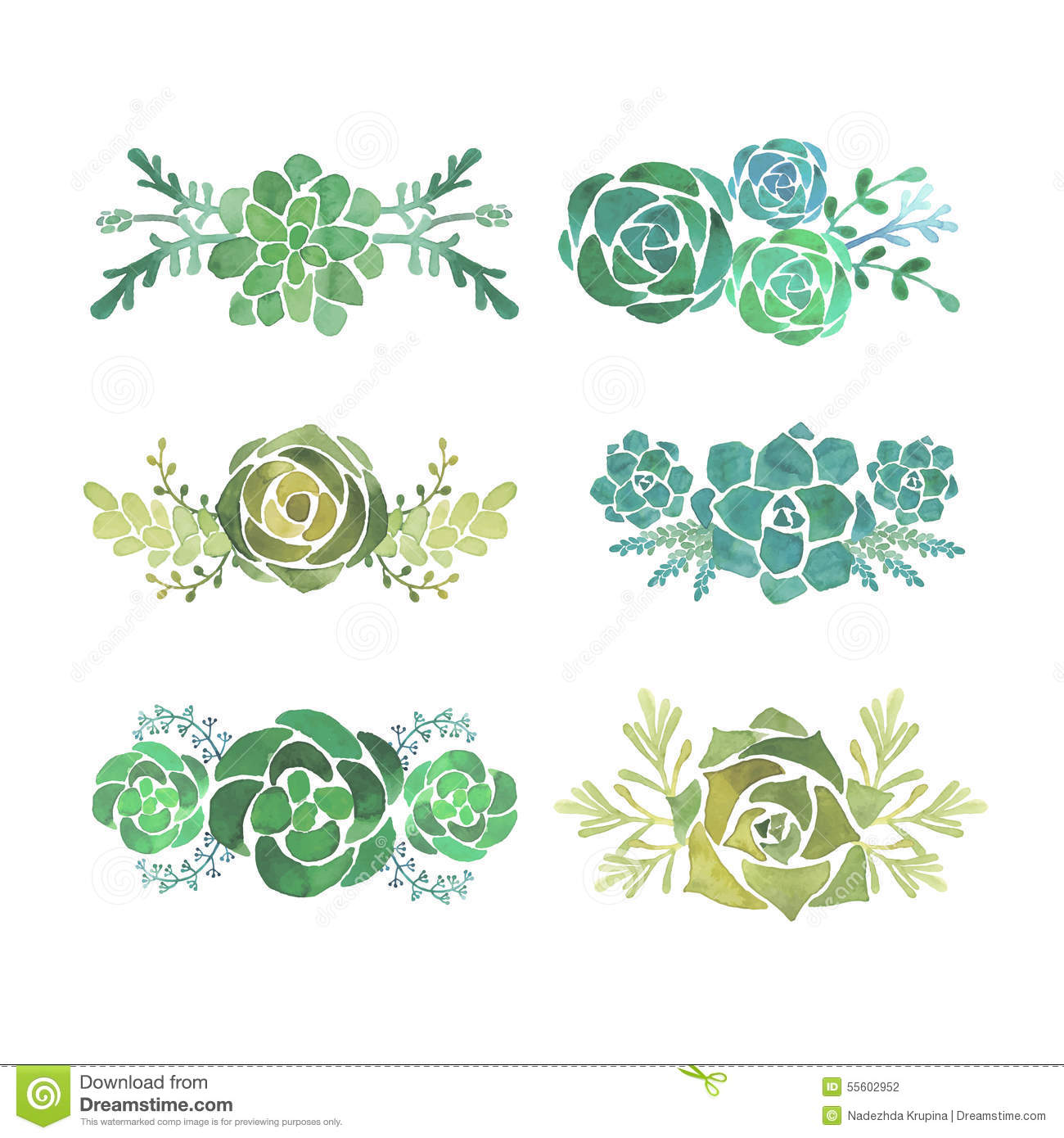 Succulent Stock Illustrations.