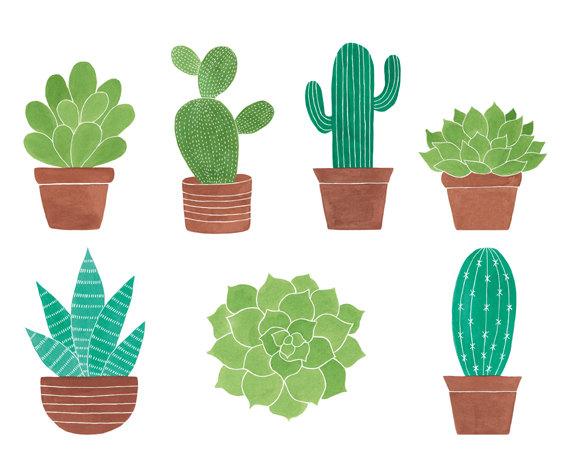 7 Watercolor Cliparts Cactus Clipart Succulent Clipart.