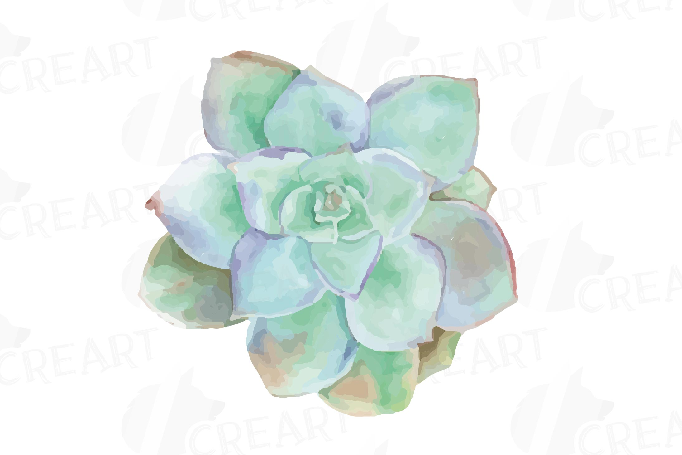 Watercolor cactus and watercolor succulent Clipart pack.