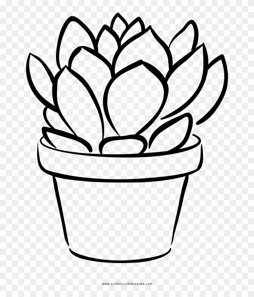 Succulent Coloring Page.