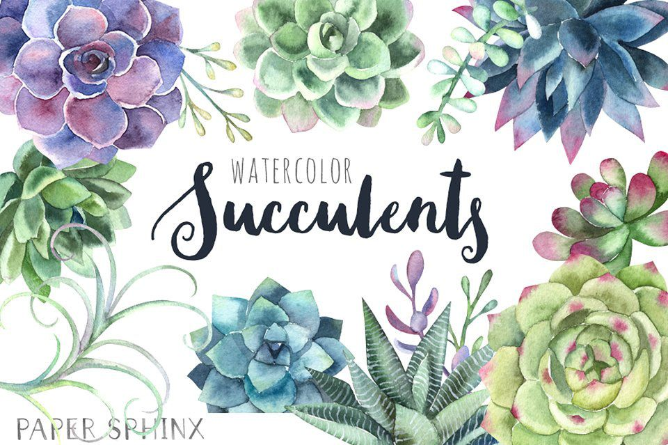 Watercolor Succulents Clipart FREE DOWNLOAD! on Behance in.