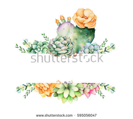 Succulent Clipart Stock Images, Royalty.