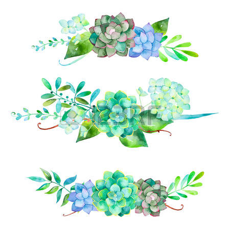 10,083 Succulent Stock Vector Illustration And Royalty Free.