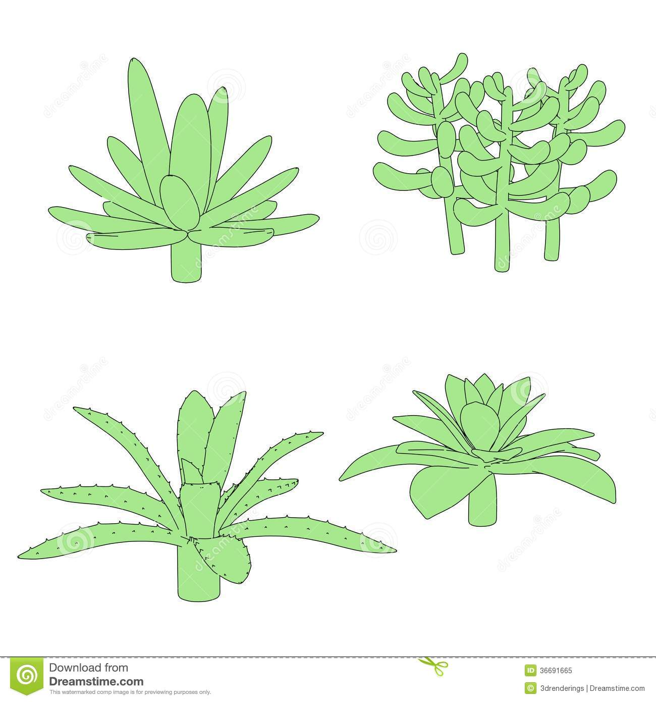 Image Of Succulent Plants Royalty Free Stock Photo.
