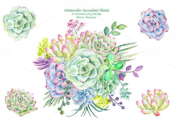 Watercolor Clipart Succulent Plants.
