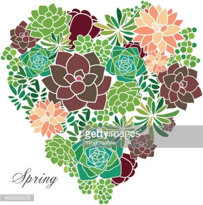 1000+ images about Succulent flowers on Pinterest.