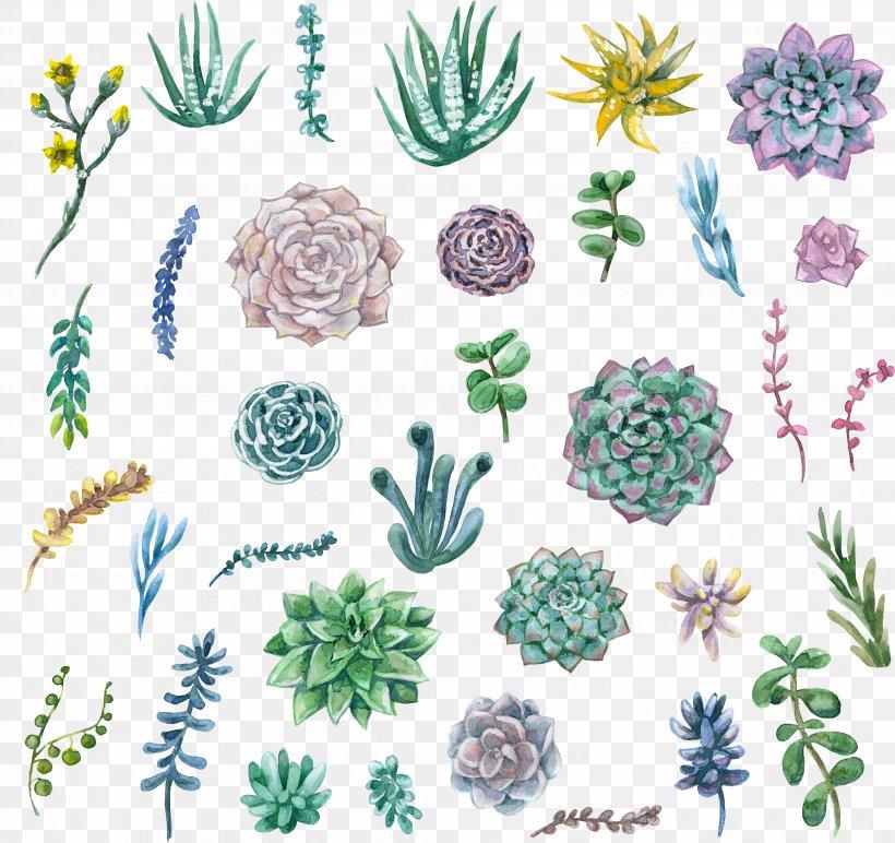 Watercolor Painting Succulent Plant Clip Art, PNG.