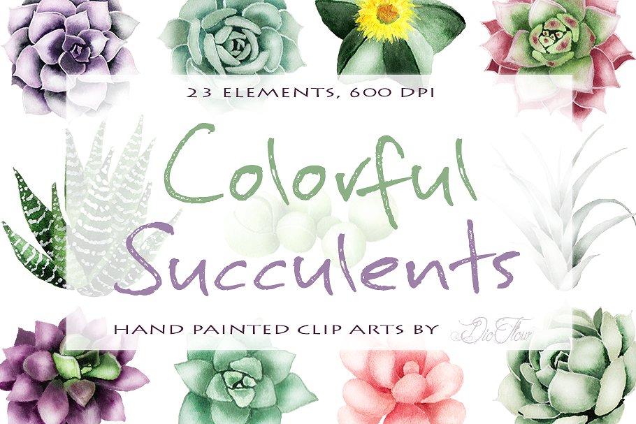 Succulent Watercolor Clipart.