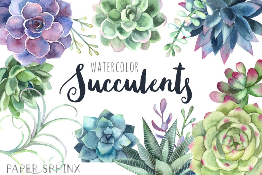 Watercolor Succulents Clipart ~ Illustrations ~ Creative Market.