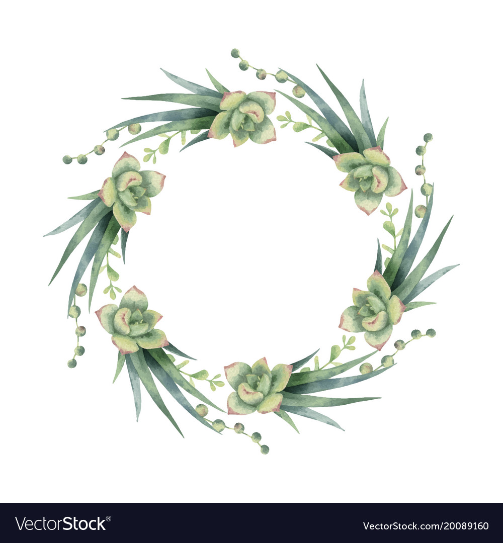 Watercolor wreath of cacti and succulent vector image.