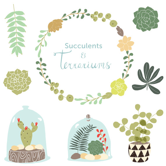 1000+ images about Succulents on Pinterest.