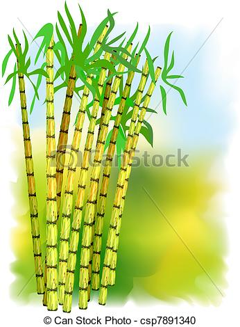 Sugarcane Clip Art and Stock Illustrations. 324 Sugarcane EPS.