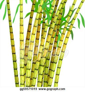 Sugar Cane Clipart.
