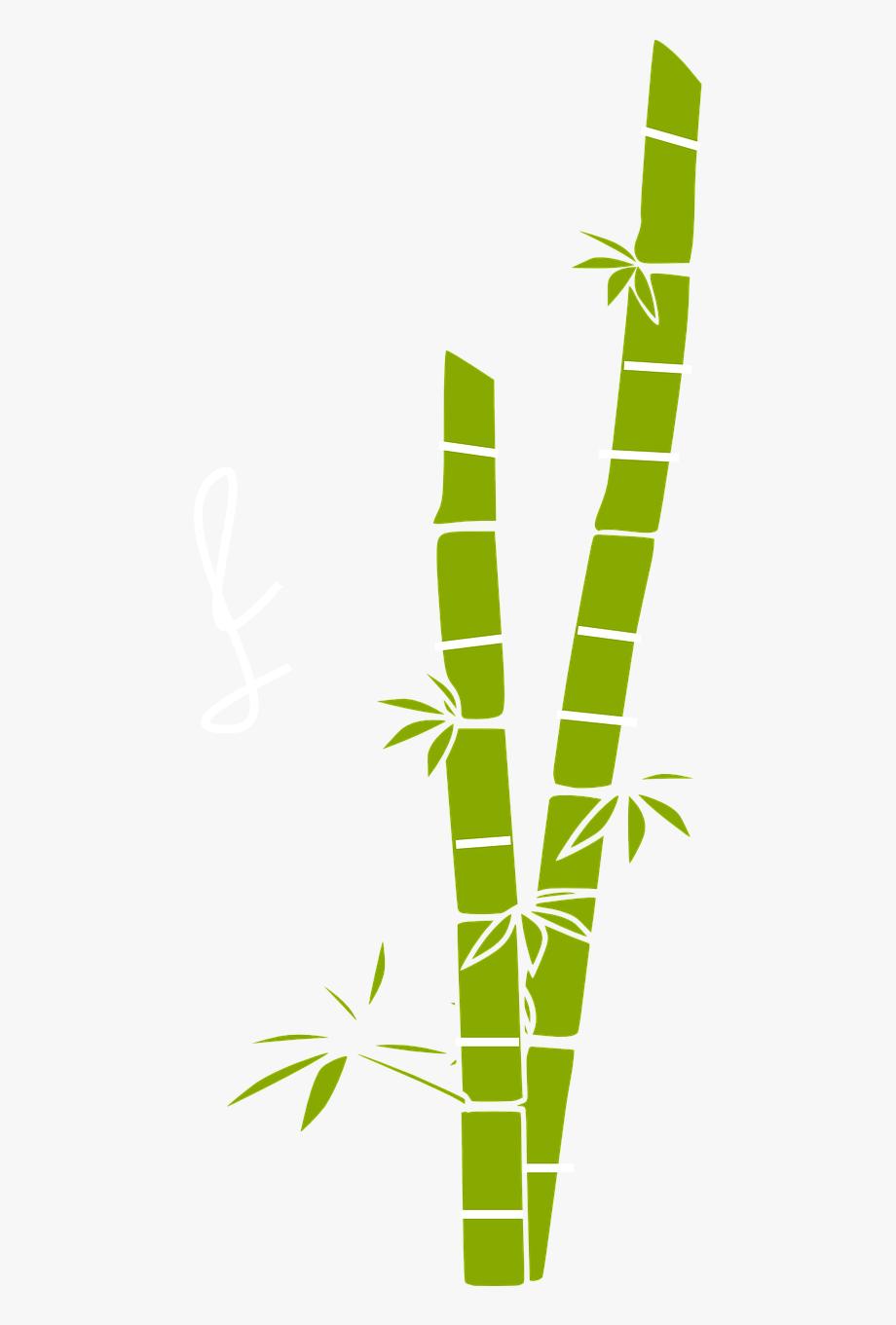 Transparent Sugar Cane Png.